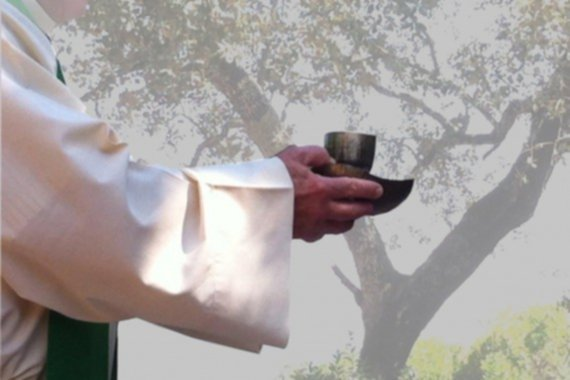 Materiales para Testigos III